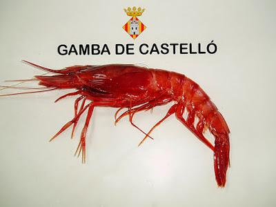 Gamba roja del Grau de Castelló