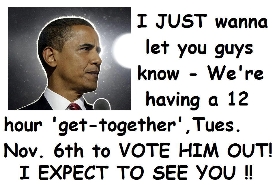 vote obama out 