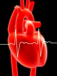 Arritmia Cardíaca tem Cura