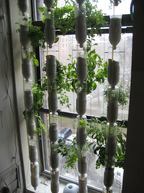 Jardín vertical con botellas recicladas