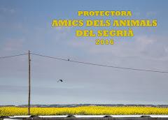 YA TENEMOS LOS CALENDARIOS DE LA PROTE!!