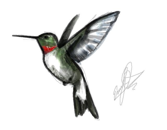 tattoos of humming bird hummingbird tattoo designs for men. Black Bedroom Furniture Sets. Home Design Ideas