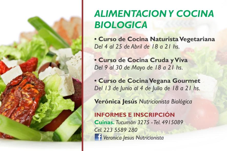 Alimentaci n natural veronica jesus curso de cocina - Curso de cocina vegetariana ...