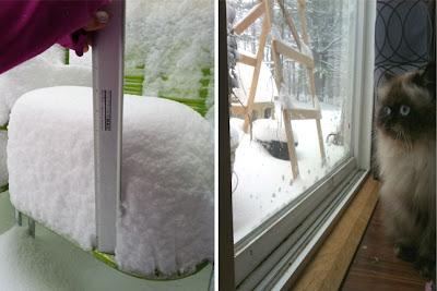 Snow storm VT