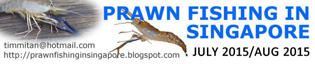 Singapore Prawn Fishing