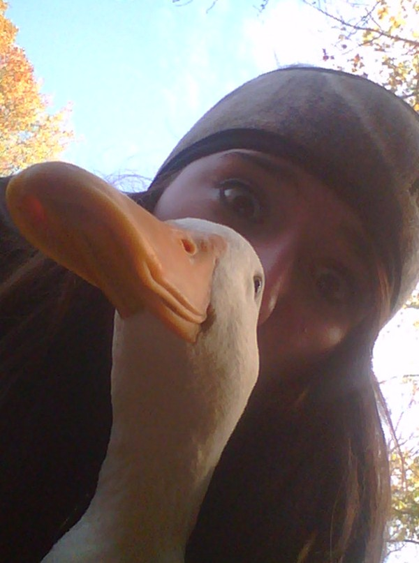duck face, funny animal pictures, animal pics