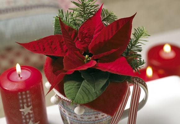 Centros de mesa de navidad con flores parte 2 - Centro mesa navidad ...