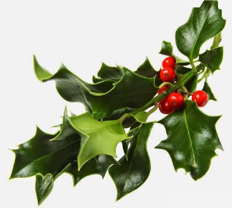 rama muerdago navidad tradicion
