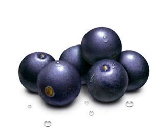 Cardo mariano que fruta es buena para perder peso embargo, siempre puedes