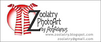 BLOG GRAPHICS and DESIGN BY ZOOLATRY