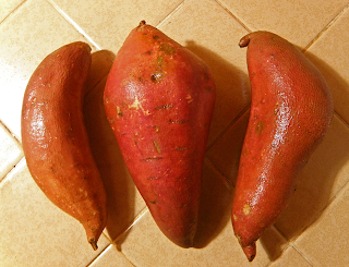Three Washed Yams on Counter