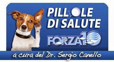 Rubrica: Pillole di Salute