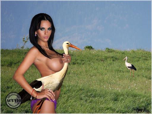Adina Barbu Playboy funny photo