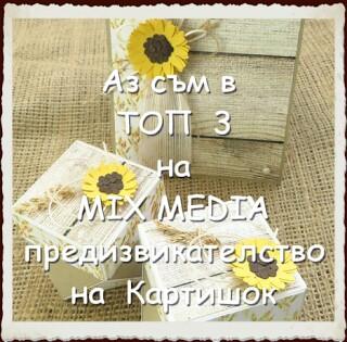 ММП 17