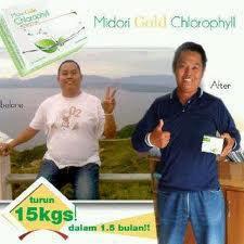 Midori Gold Chlorophyl