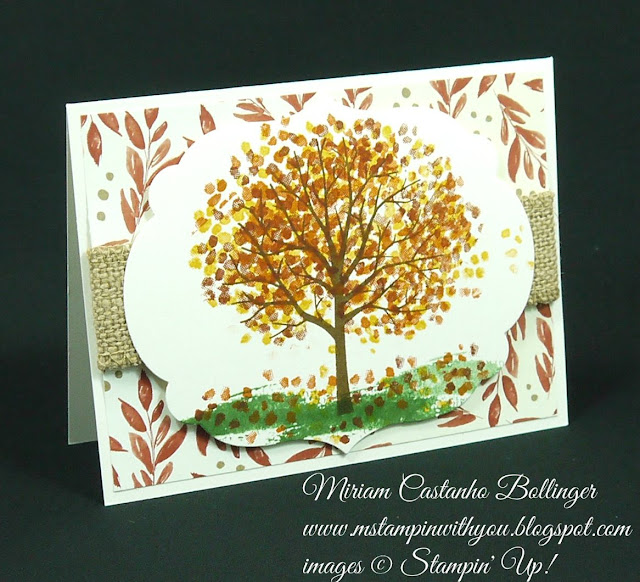Miriam Castanho Bollinger, #mstampinwithyou, stampin up, demonstrator, pp, ccmc, all occasions card, sheltering tree stamp set, big shot, labels collection, su