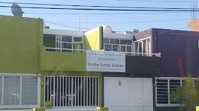CANDIDATOS INDEPENDIENTES ALCANZAN NIVELES MUY ALTOS DE IMPACTO SOCIAL