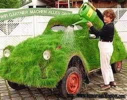Consultorio de Monstrua 6 coche hierba