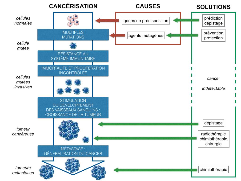 Tetracycline soleil - Fluoxetine 20 mg nedir