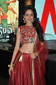 Pragya Jaiswal at Kanchem audio launch-thumbnail-18