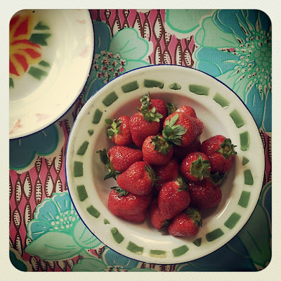 ByHaafner, strawberries, oilcloth