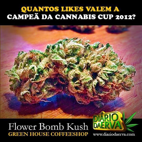 Flower Bomb Kush, Campeã da High Times Cannabis Cup 2012