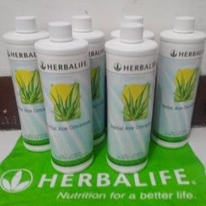 produk gemuk herbalife