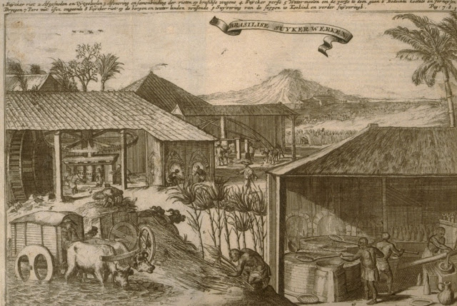 Brazil,sugar plantation,lithograph