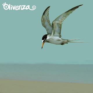 Olivenza Disco