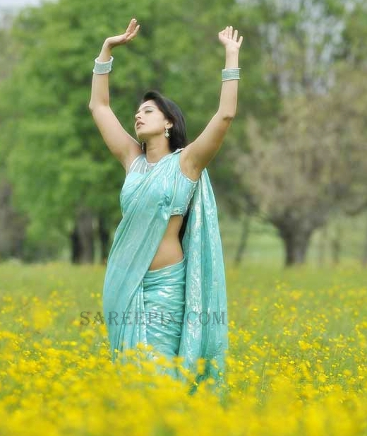 Anushka-shetty-dancing-saree-Damarukam-movie