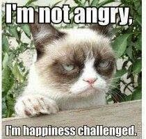 I am not angry. I am happiness challenged - Cat image