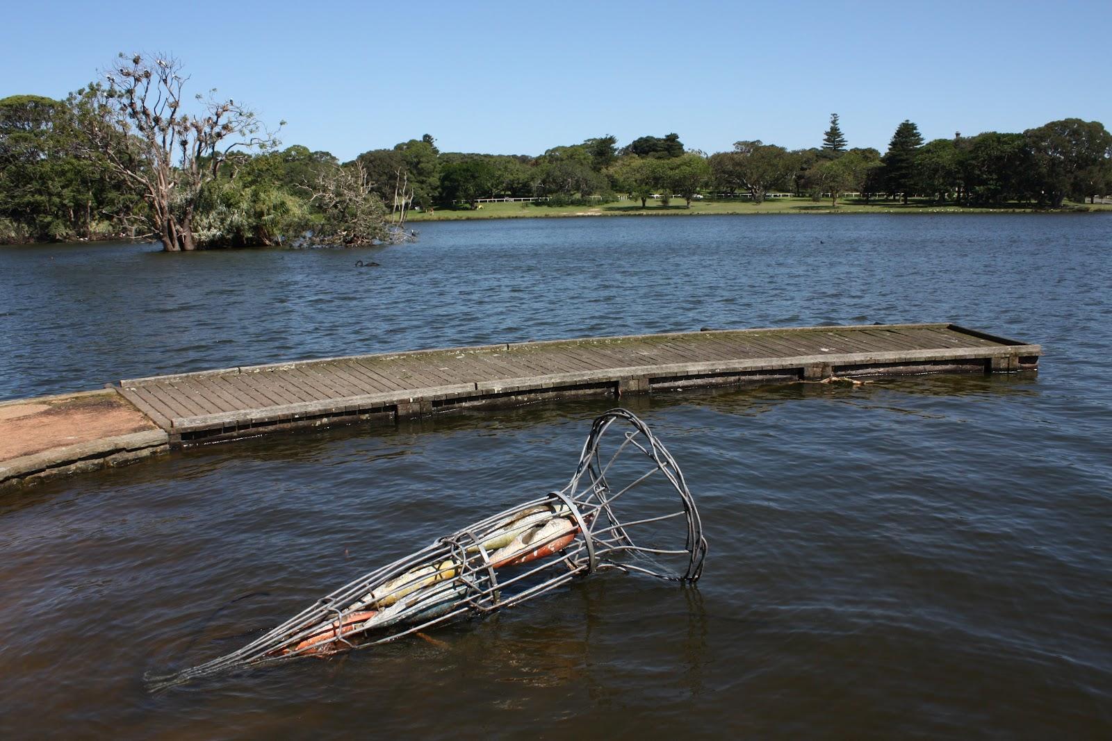 Sydney city and suburbs centennial park boardwalk for Fish ponds sydney