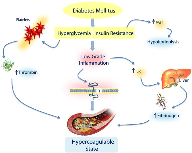 journal about diabetes mellitus pdf