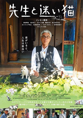 Film Teacher And Stray Cat di Bioskop