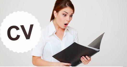 les meilleurs exemples de cv pour 2013