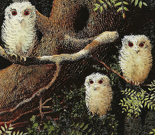 My Owl Barn Book Owl Babies By Martin Waddell