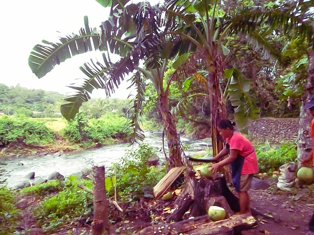fresh buko at Ilocos