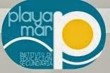 I.E.S. Playamar Torremolinos