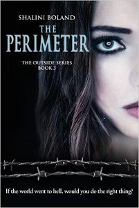 The Perimeter (Outside Series, Book 3)