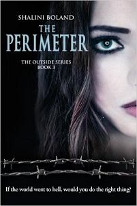 The Perimeter (Outside Series, Book 3)