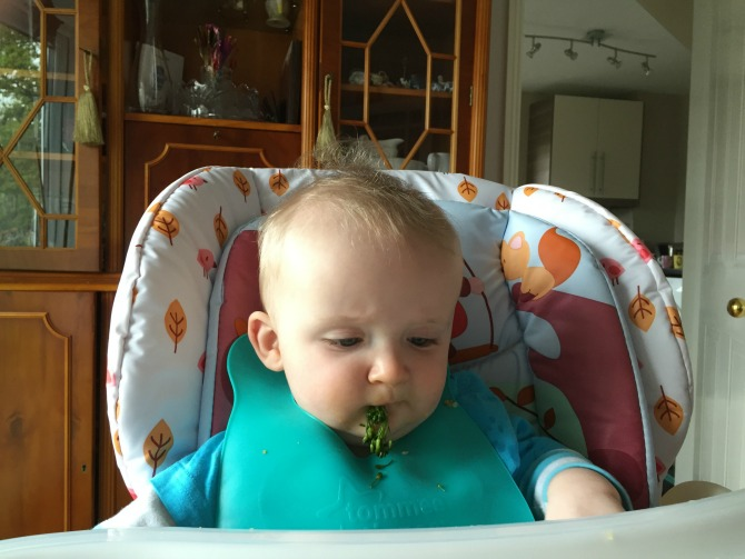 Squidge enjoying broccoli