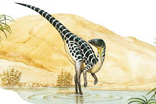 Il Leaellynasaura visse 105 milioni di anni fa in Australia