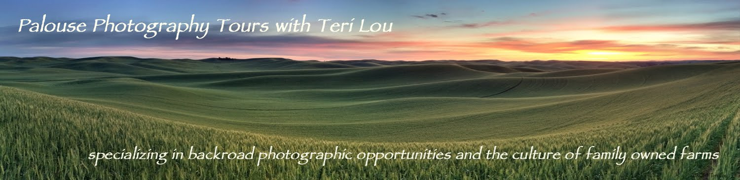 Palouse Photography Tours with Teri Lou