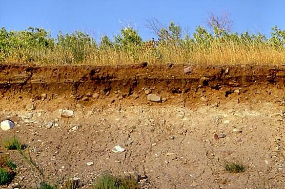 Mengenal Lapisan Pada Tanah