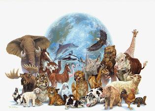 Hazte vegano y vive de manera justa con todos los animales.