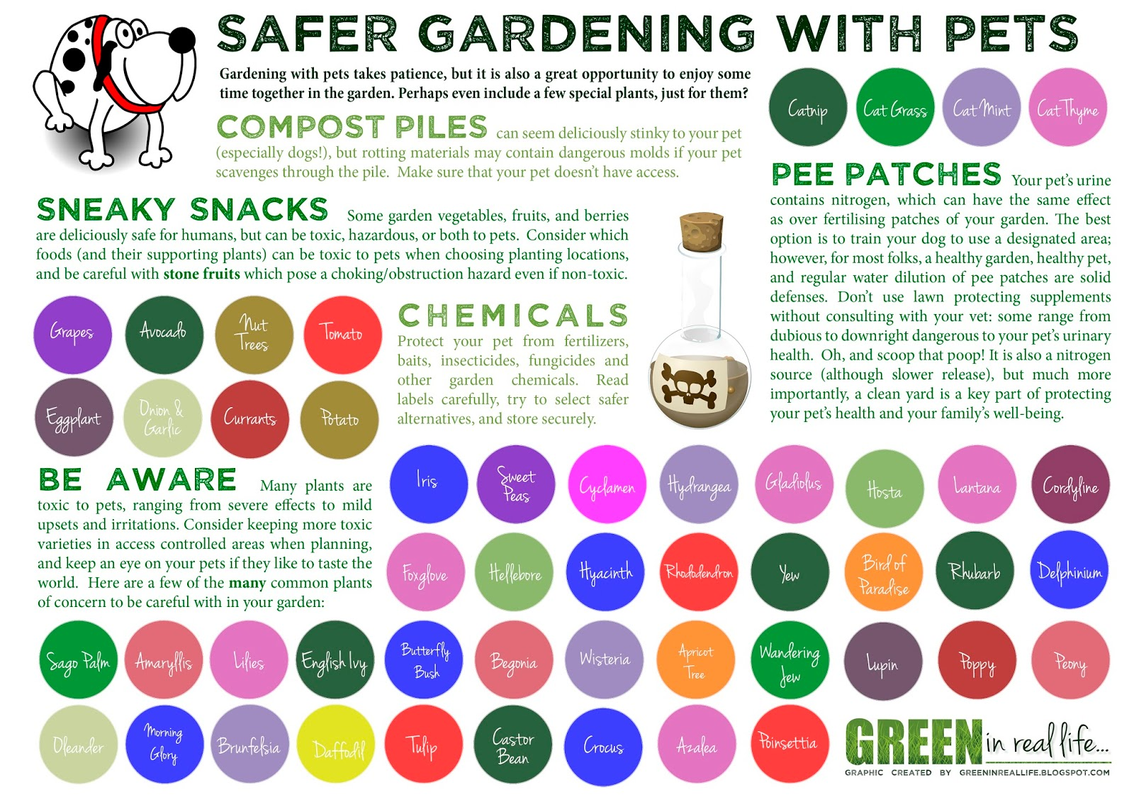 Green in Real Life: Ideas for the Home Garden - Gardening with Pets