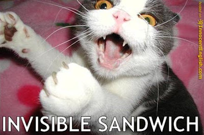 [Image: funny-kitty-eating-big-sandwich.jpg]