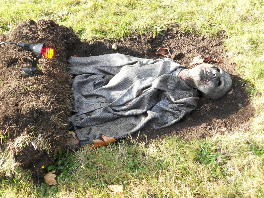 Diy Sod Pumpkinrotcom Whats Brewing Sod Of The Dead