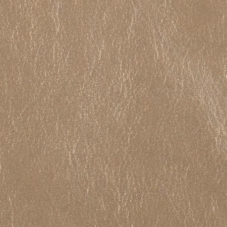 Aesthetic Oiseau Metallic Leather Fabric