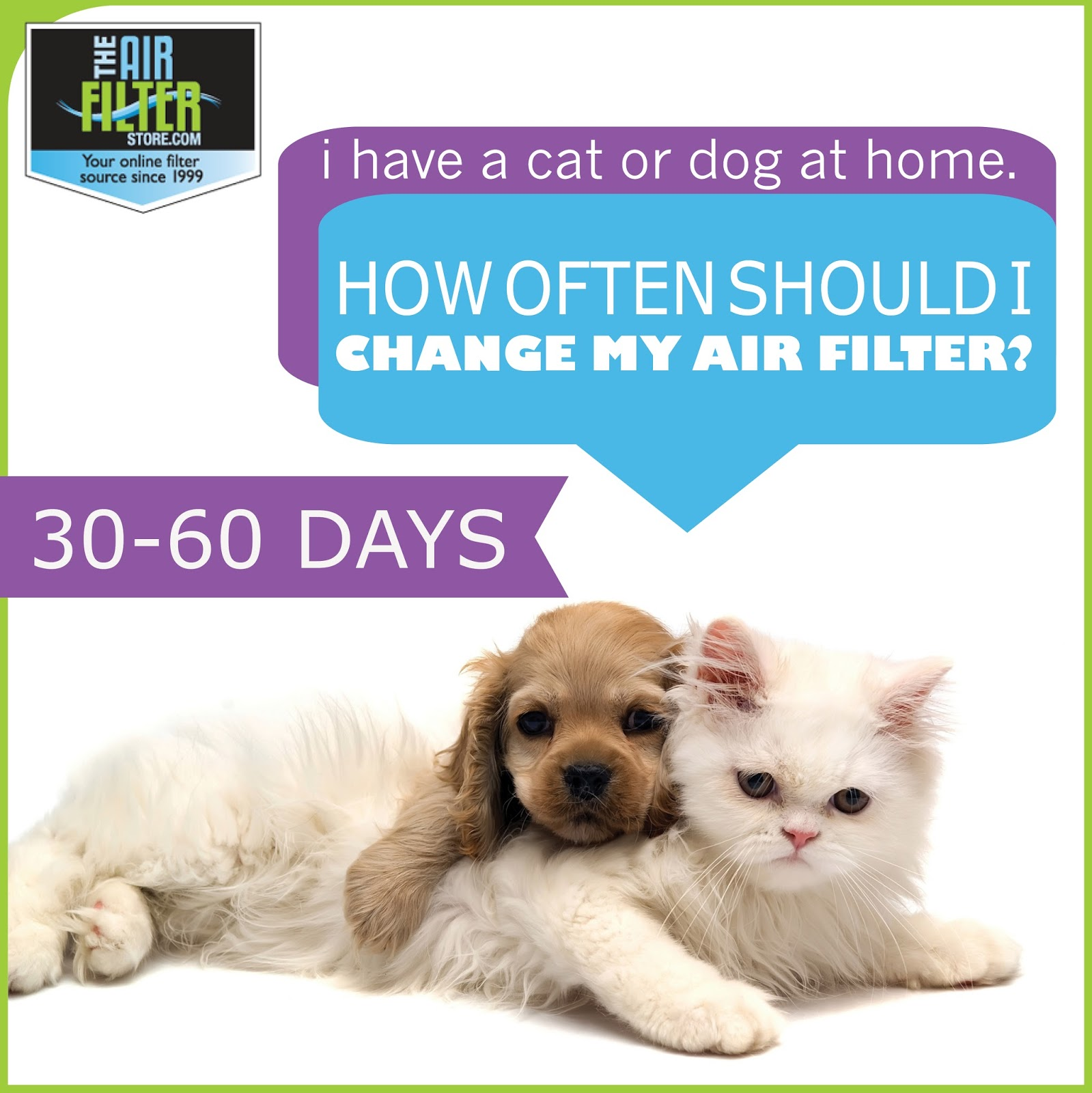 fido and air filters do pets really make a difference in my home air quality the air filter. Black Bedroom Furniture Sets. Home Design Ideas